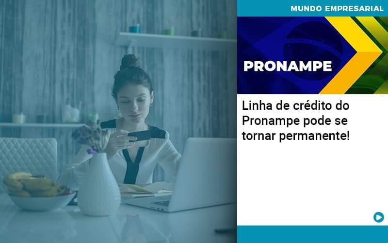 Linha De Crédito Do Pronampe Pode Se Tornar Permanente!